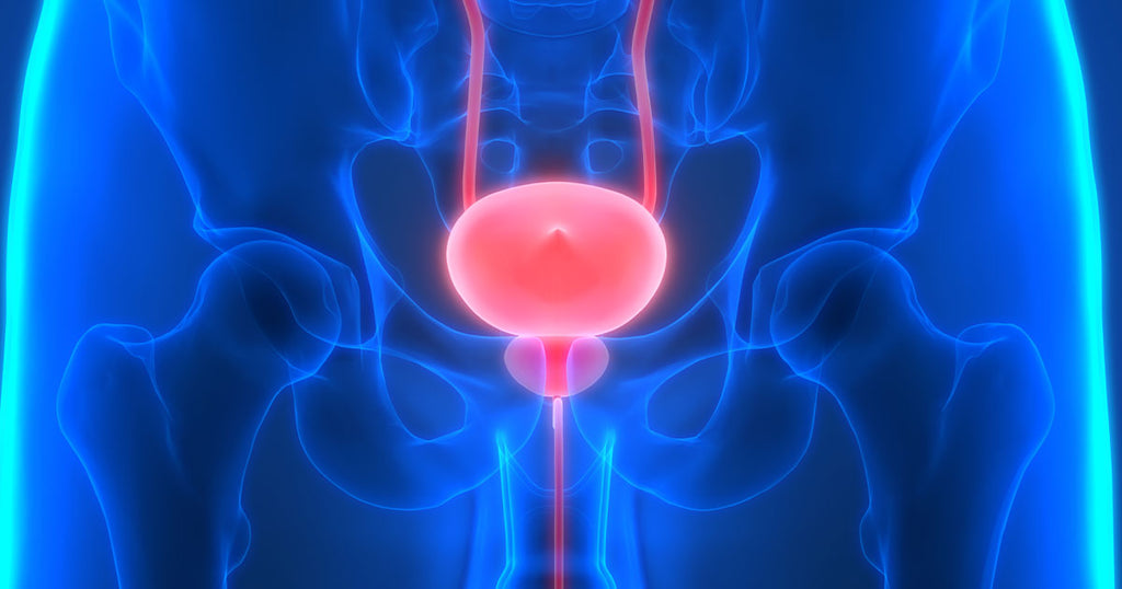 Prostate Health And Supplement Recommendations
