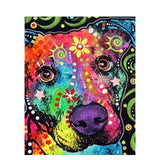 color Dog series Diy painting number diy oil paint by numbers kit painting canvas painting by numbers for kids adults art paint