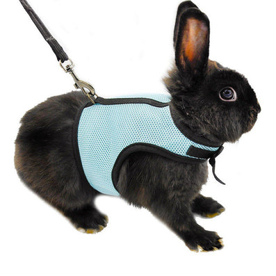 3 Colors Hamster Rabbit Harness And Leash Set Ferret Guinea Pig Small Animal Pet Walk Lead S/M/L