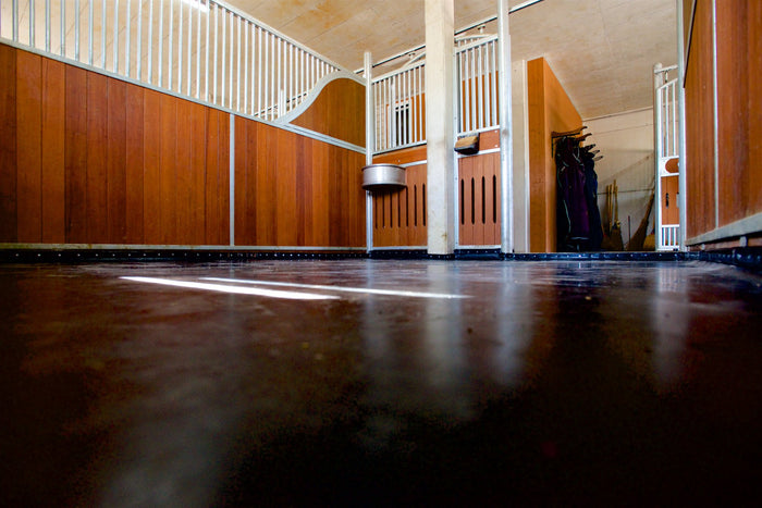 Why equine rehabilitation experts rely on ComfortStall Orthopaedic Sealed Flooring System
