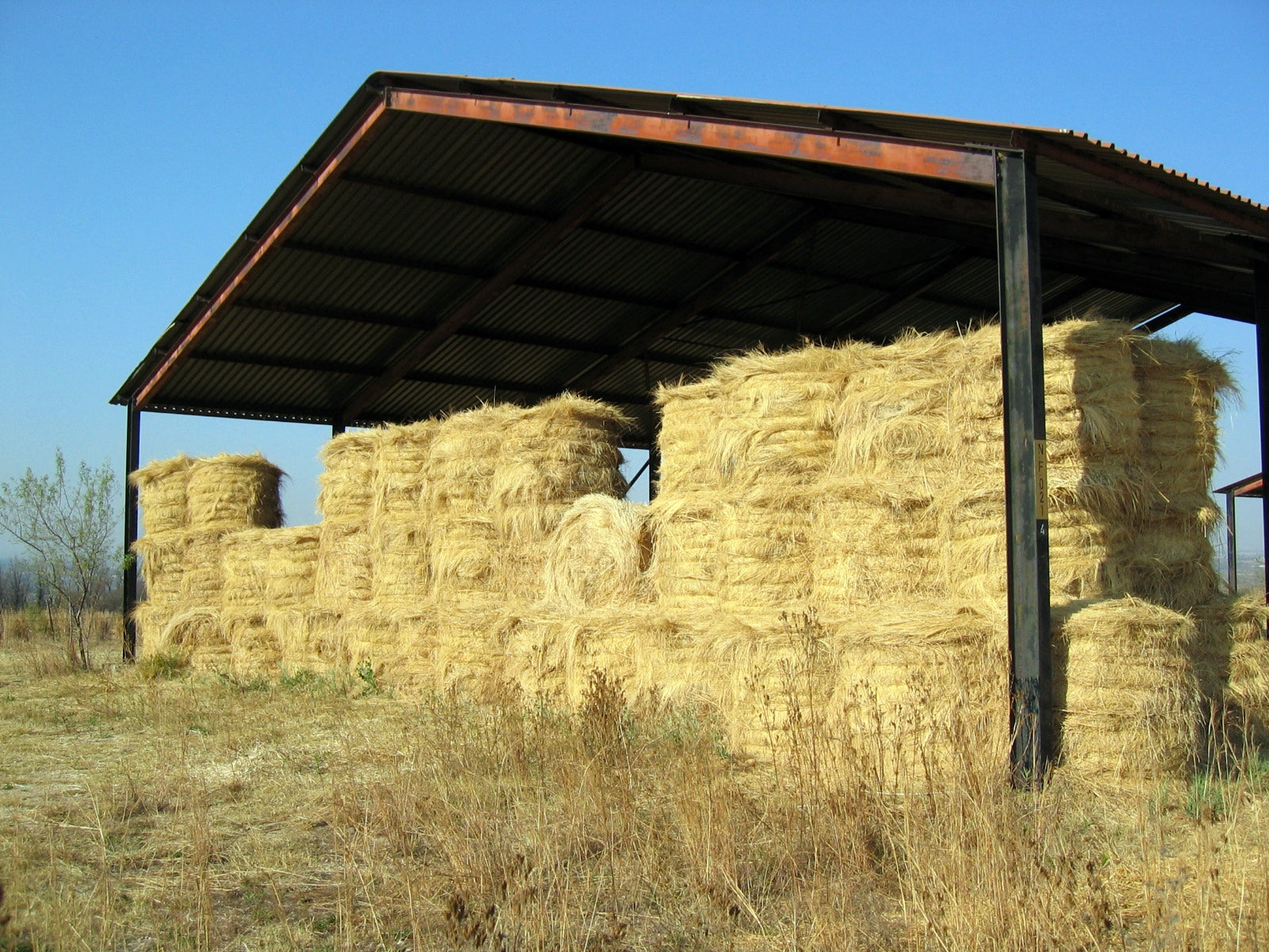 Maintaining your horse's health with improved storage of hay