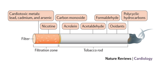 the harmful chemicals that are found in cigarettes and when you smoke