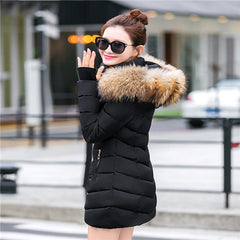 2017 Quality Winter Jacket Coat Warm Long Women Parka Artificial False Raccoon Fur Collar Women Winter Coat Slim Female Jacket