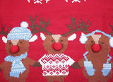 Women's Christmas Cute Reindeer Knitted Sweater Girl Pullover (Medium, Friends)
