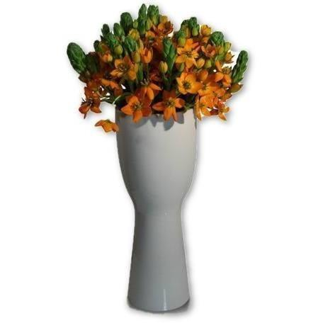 Bright and Orange Stars - flowersbypouparina.com