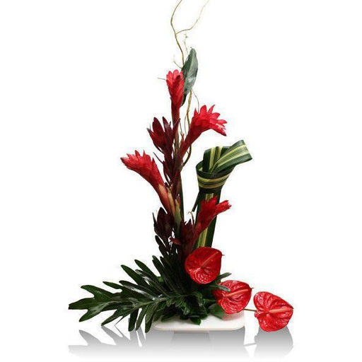 Tropical Juliet - flowersbypouparina.com