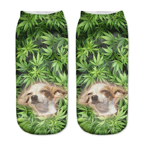 High Dog Socks - LovelyMojo