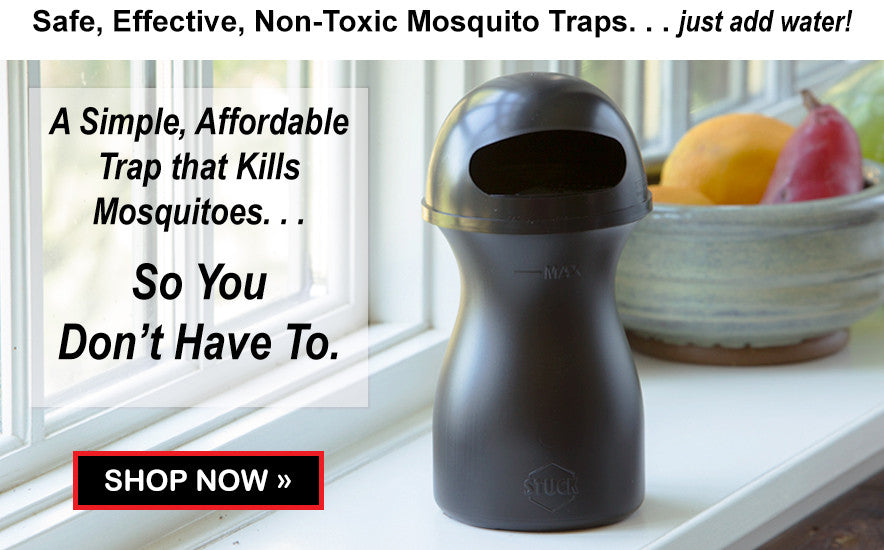 Shop Indoor Mosquito Trap
