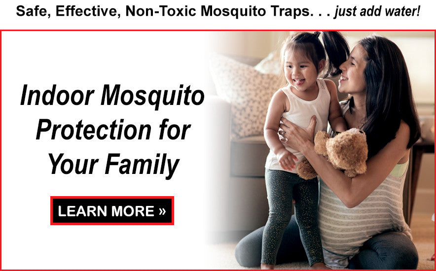 Learn More About Indoor Mosquito Protection