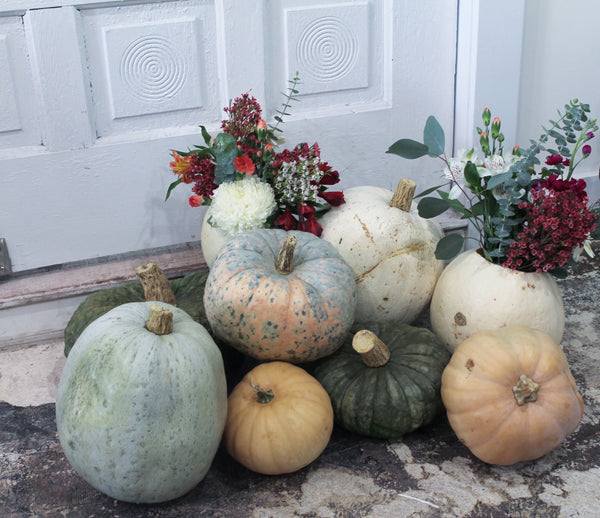 Pumpkin Floral Arrangement Workshop with Anna Edwards (Nov 2)