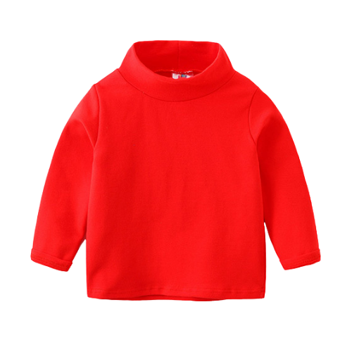 Basix Turtleneck
