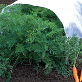 Crop Cover Rolls - at Valley Landscape Supply - your Northwestern USA garden supply connection.