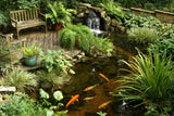 Backyard Pond Kits - the sight and sound of water in your garden or yard.  Complete DYI kit.