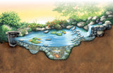 Aquascape Ponds - ecofrendly in your own backyard!  Aquascape ponds use an ecosystem to maintain the health of the pond.