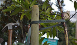 ArborTie Tree Tie a soft non-girdling tree tie that is easy to use and less expensive.