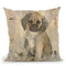 Paco V2 Throw Pillow By Albena Hristova
