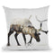 Arctic Reindeer Throw Pillow By Andreas Lie
