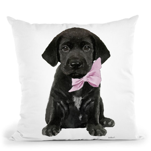 Black Labrador Throw Pillow By Amanda Greenwood