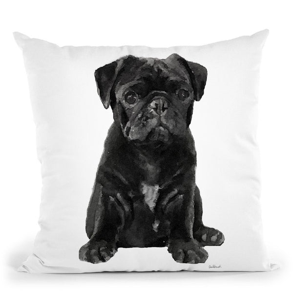 Black Pug Throw Pillow By Amanda Greenwood
