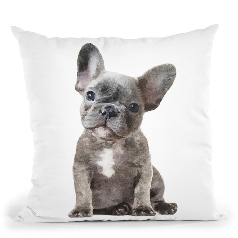 Grey Frenchie Puppy Throw Pillow By Amanda Greenwood