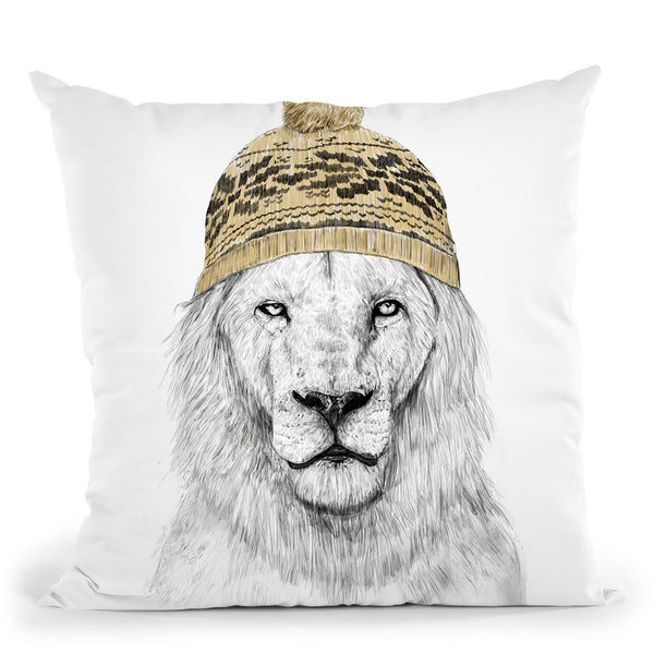 Winter Is Here Throw Pillow By Balazs Solti