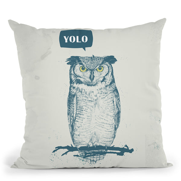 Yolo Throw Pillow By Balazs Solti