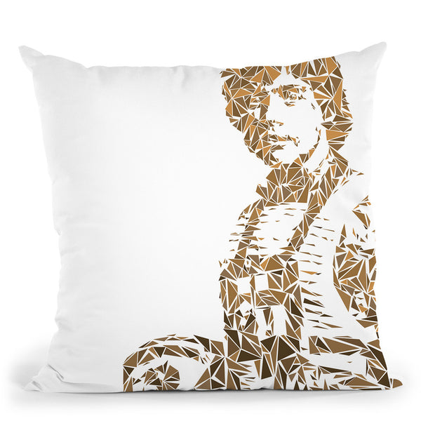 Luke Skywalker Throw Pillow By Christian Mielu