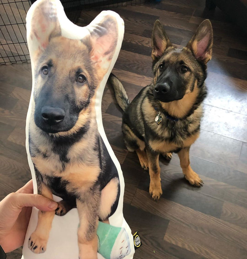 Custom German Shepherd Pillow - All About Vibe