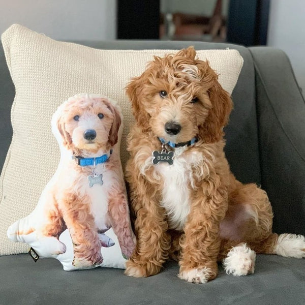 Custom Goldendoodle Shaped Dog Pillow