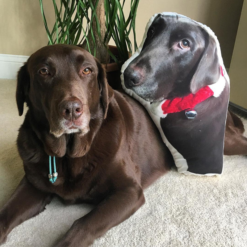 Custom Labrador Retriever Shaped Dog Pillow