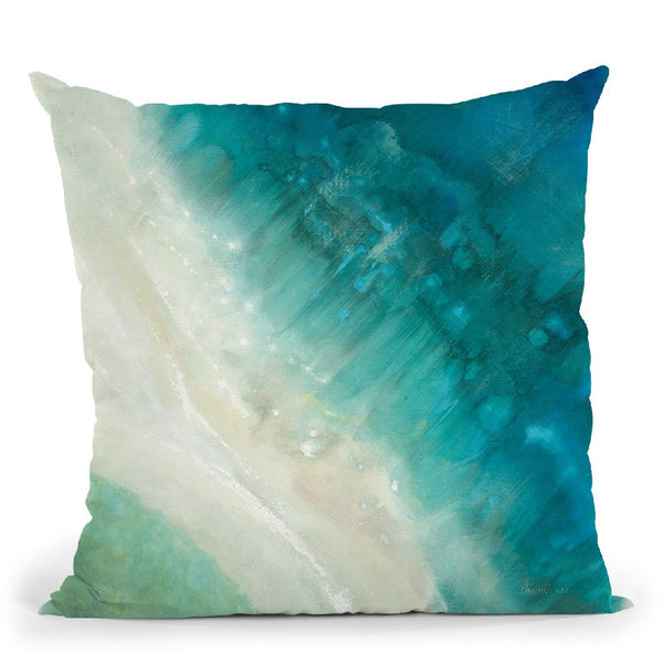 Birdseye View  Throw Pillow By Danhui