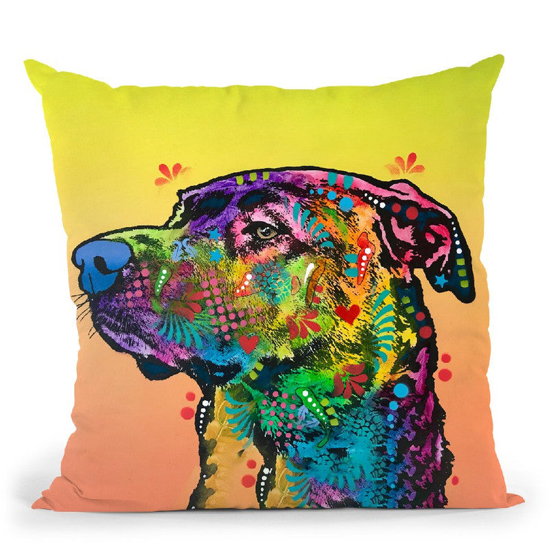 Img 0797 Throw Pillow By Dean Russo