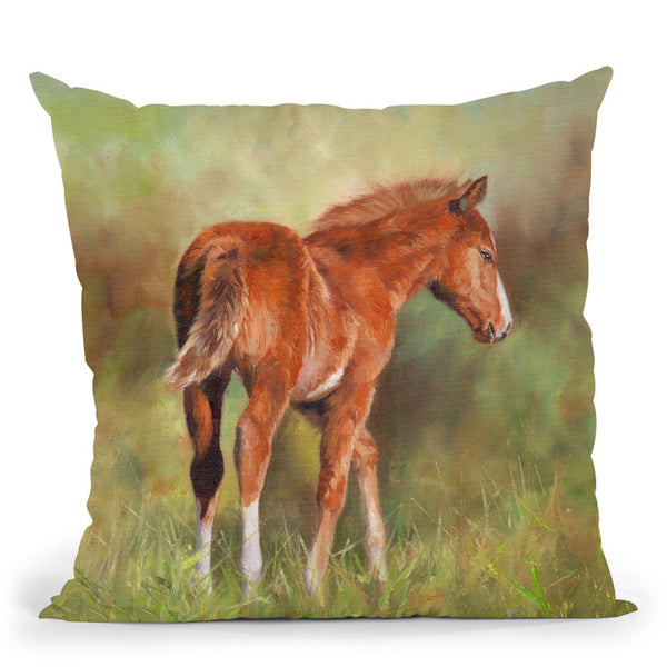 Foal Throw Pillow By David Stribbling
