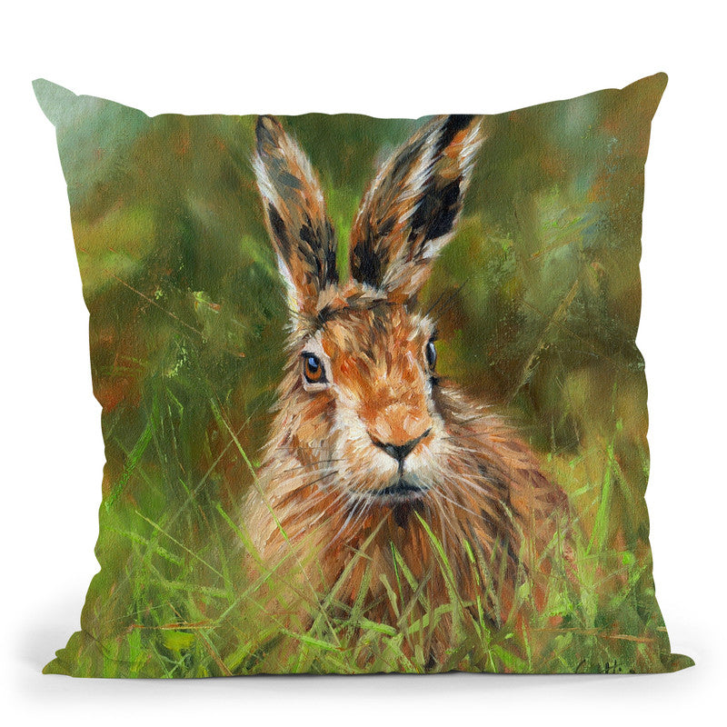 Hare I Throw Pillow By David Stribbling