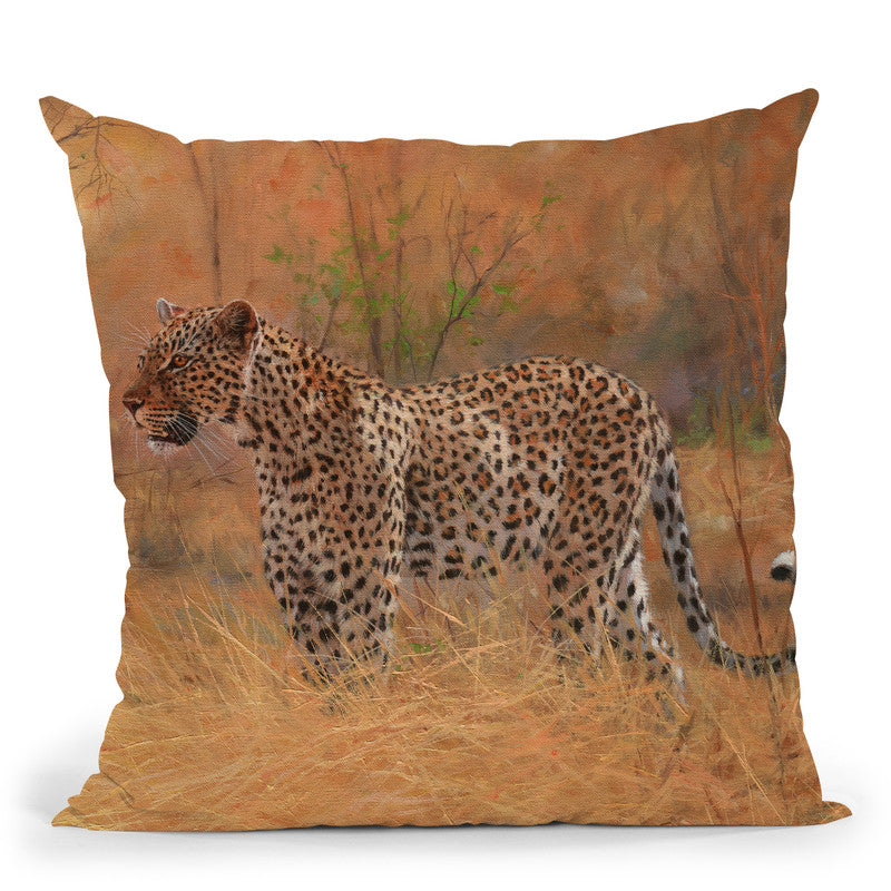 Leopard In The African Bush Throw Pillow By David Stribbling