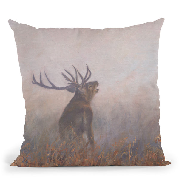 Red Deer Misty Morning Throw Pillow By David Stribbling