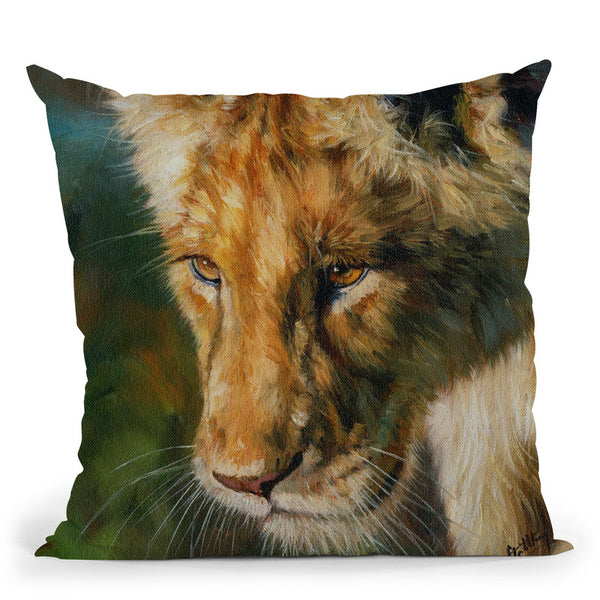 Young Lion Looking Down Throw Pillow By David Stribbling