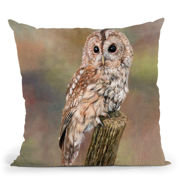 Tawny Owl Throw Pillow By David Stribbling