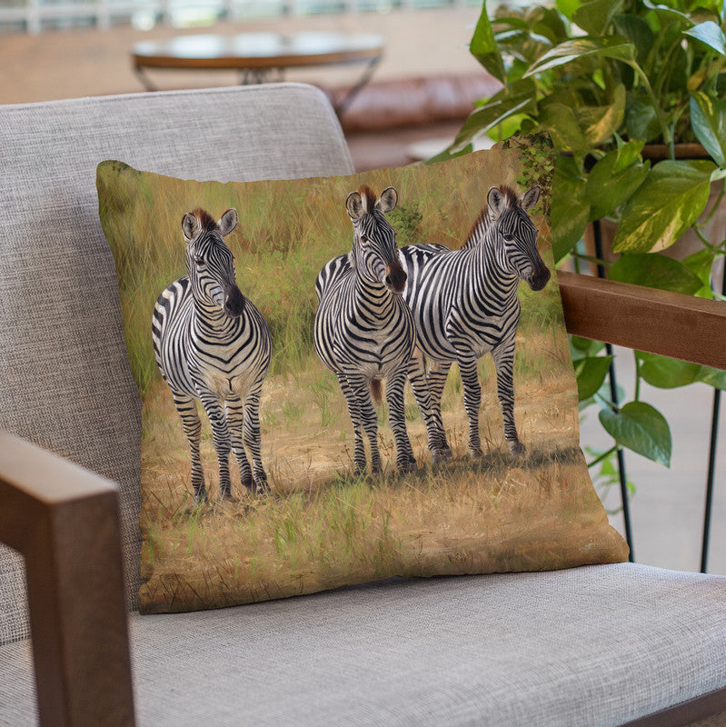 Three Zebras South Luangwa Throw Pillow By David Stribbling