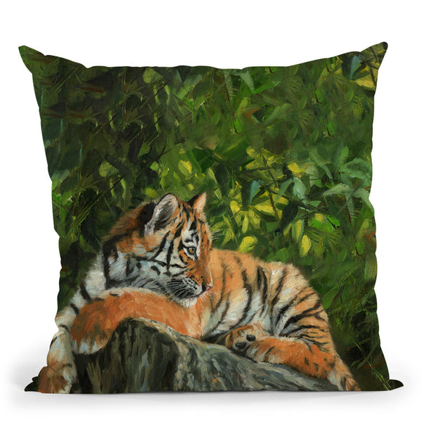 Tiger On Rock Throw Pillow By David Stribbling