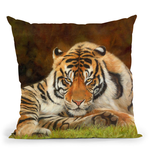 Tiger Stare Throw Pillow By David Stribbling