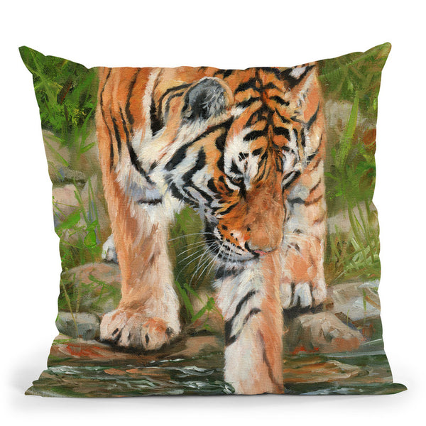 Tiger Stream Throw Pillow By David Stribbling