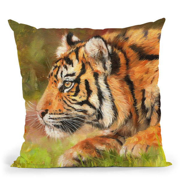 Tiger Study I Throw Pillow By David Stribbling