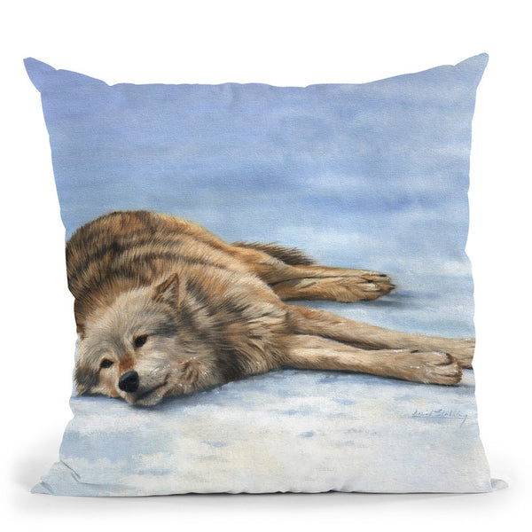 Wolf Laying Snow Throw Pillow By David Stribbling