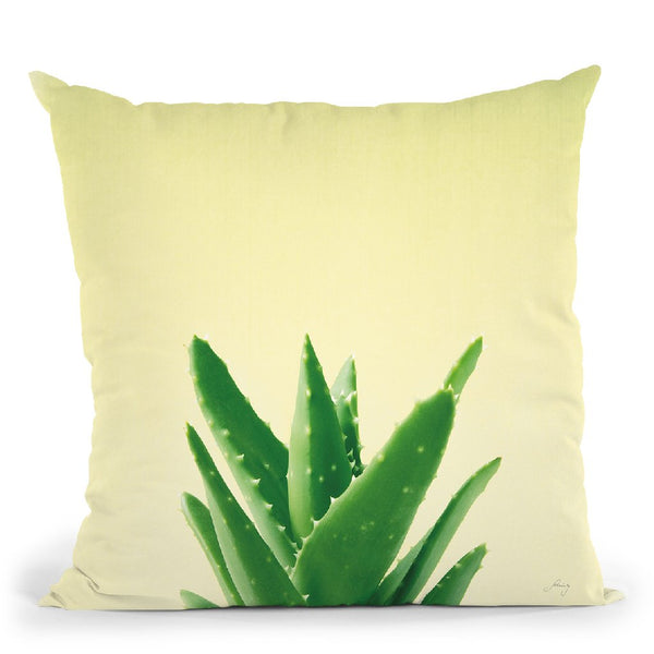 Succulent Simplicity V Throw Pillow By Felicity Bradley