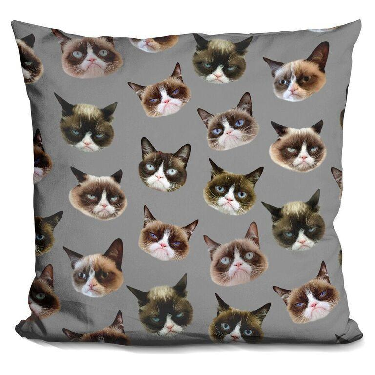 The Many Faces of Grumpy Pillow