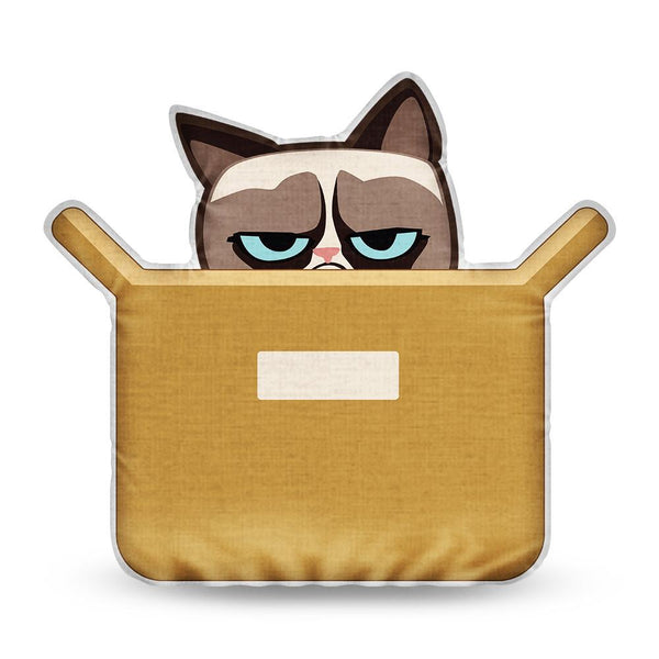 Grumpy Cat The Box Is Better Throw Pillow