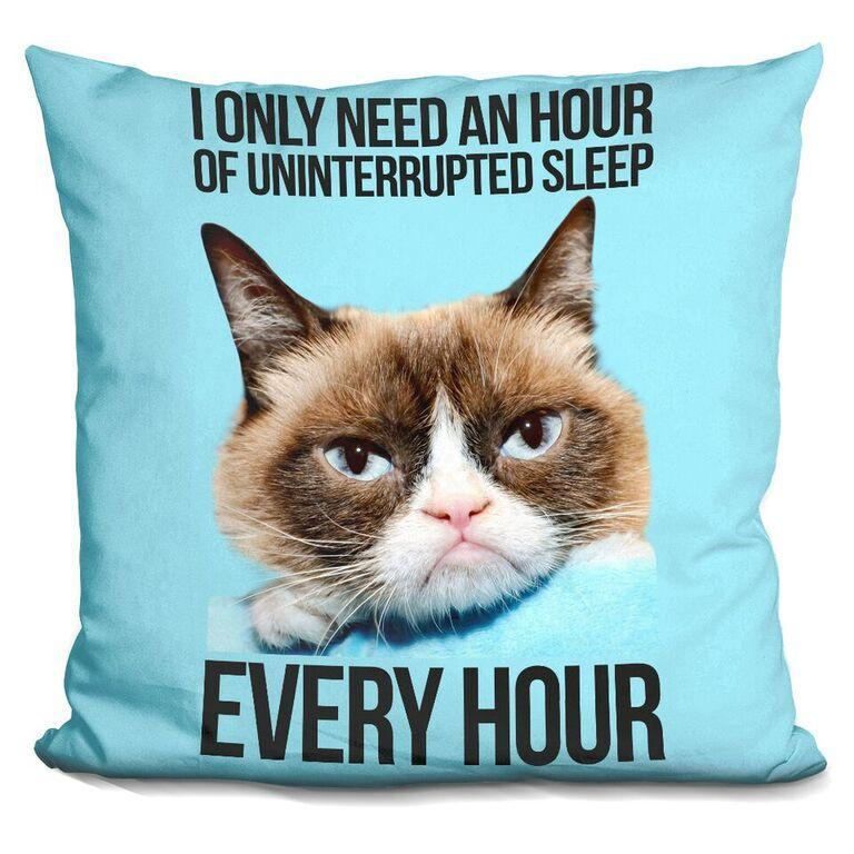 I only need an hour of uninterrupted sleep EVERY HOUR Pillow