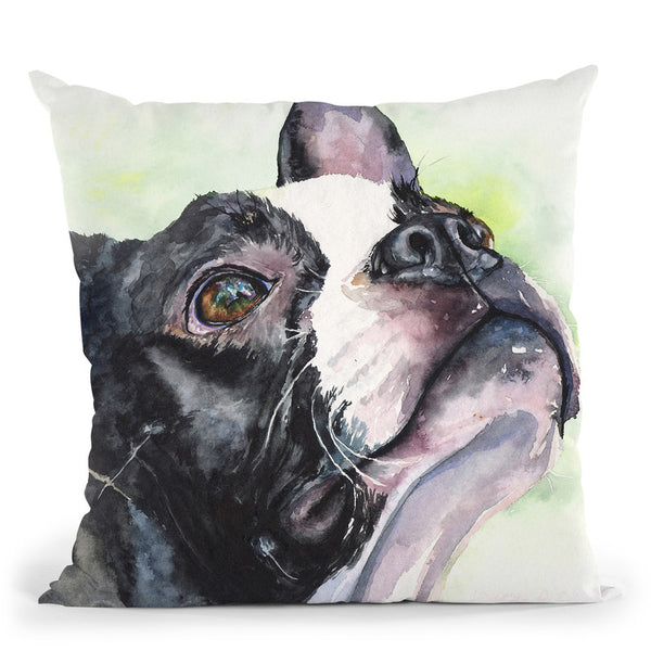 Boston Terrier Throw Pillow By George Dyachenko