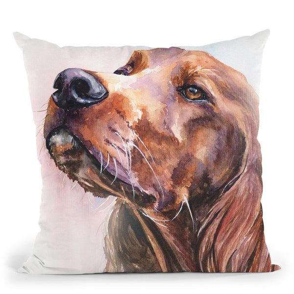Irish Setter Throw Pillow By George Dyachenko